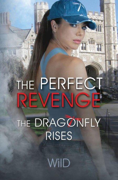 The-Perfect-Revenge-book-cover